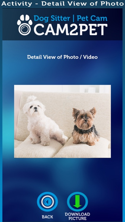 Cam2Pet – Dog Monitor & Pet Camera screenshot-3