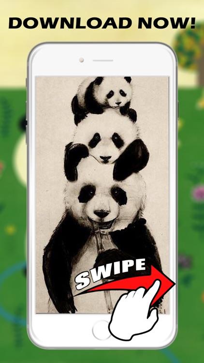 Panda HD Wallpapers and Backgrounds screenshot-3
