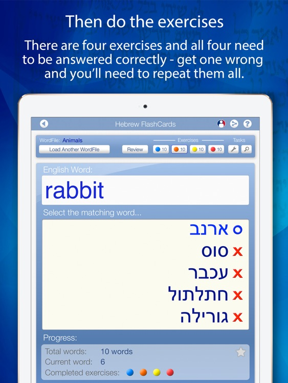 Learn Hebrew FlashCards for iPad screenshot-3