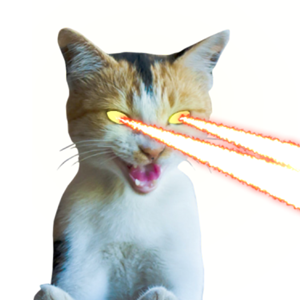 Laser Cats Animated app