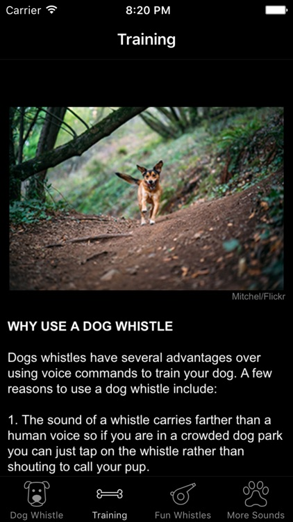 Dog Whistle & Training - Free Sound Trainer App