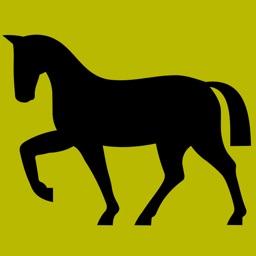 3Strike Horses - Identify Horse Breeds