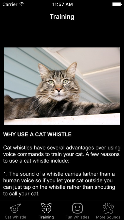 Cat Whistle & Training - Free Sound Toy App
