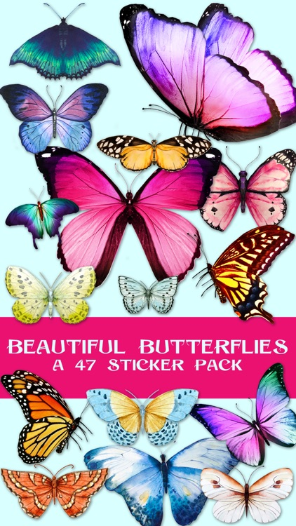 Beautiful Spring & Summer Butterflies Sticker Pack screenshot-0