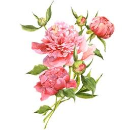 Watercolor Flower Bouquets Sticker Pack