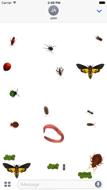 dizzy bugs - Animated Stickers screenshot-2