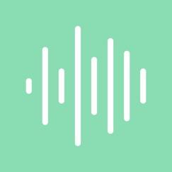 Noisli analyse, service client