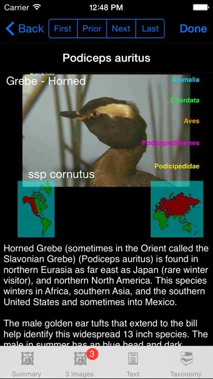 Birds of the World - eBirdsW - A Bird App screenshot-3