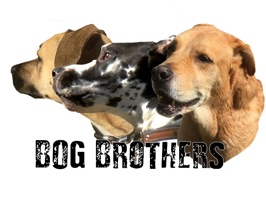Bog Brothers Sticker Pack