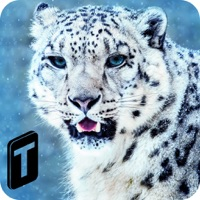 Codes for Forest Snow Leopard Sim Hack