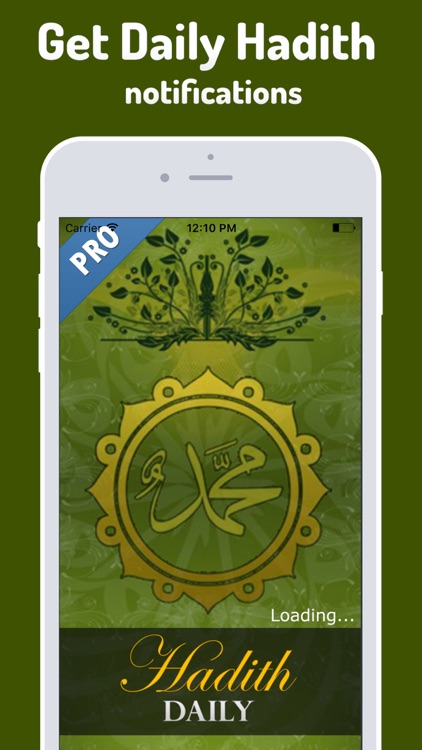 Hadith Daily Pro - Islamic App for Muslim, Islam screenshot-0
