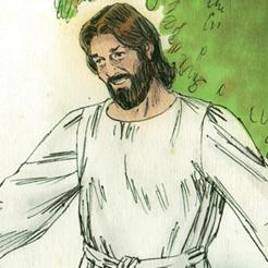 Plán Boží: Od stvoření až Krista