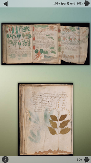 Voynich Manuscript! Screenshot