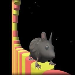 Flip The Mice