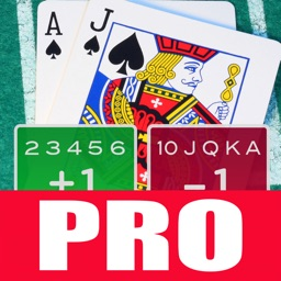 A Blackjack Card Counter - Professional