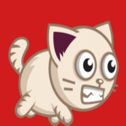 Super Cat Run