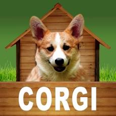 Activities of Corgi - opoly