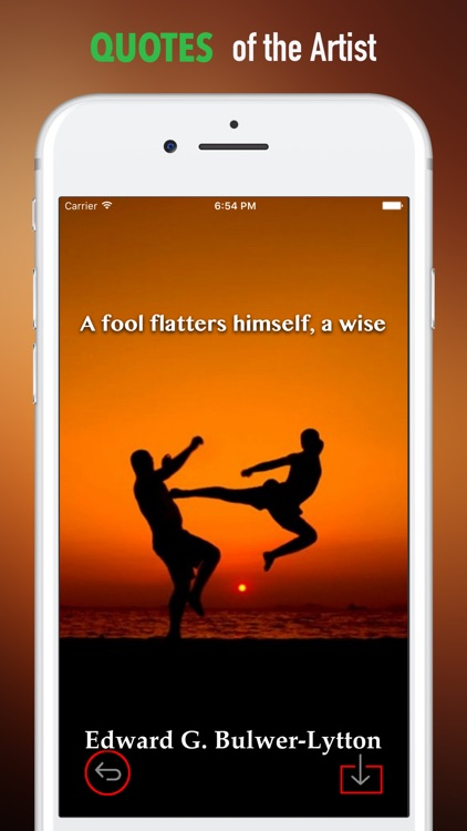 Taekwondo Wallpapers HD-Quotes and Art Pictures screenshot-3