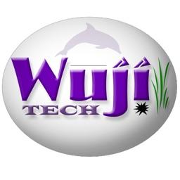 WujiBrainWave
