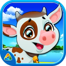 Activities of Animals Flash Card For Kids