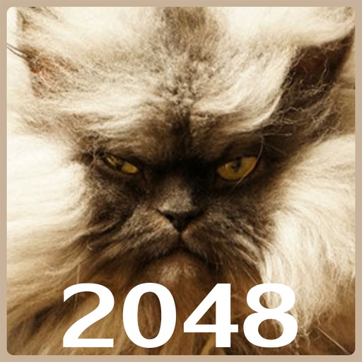 Cats 2048 with mPoints