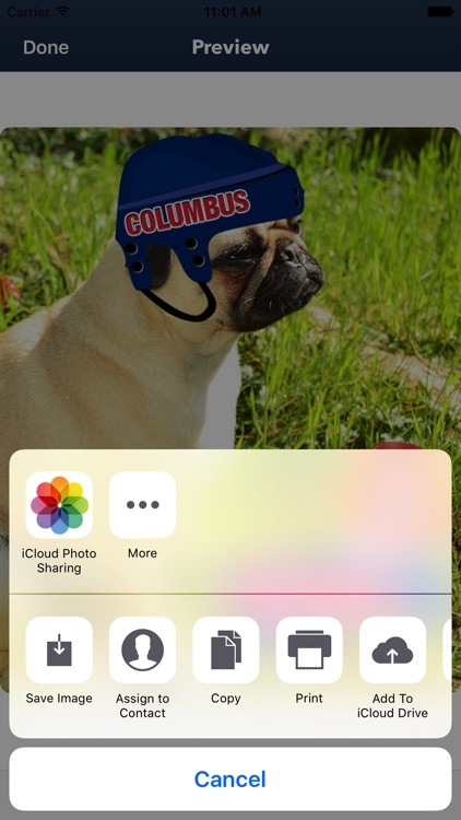 Columbus Hockey Stickers & Emojis screenshot-4