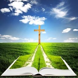 La Santa Biblia NVI - (The NVI Bible in Spanish)