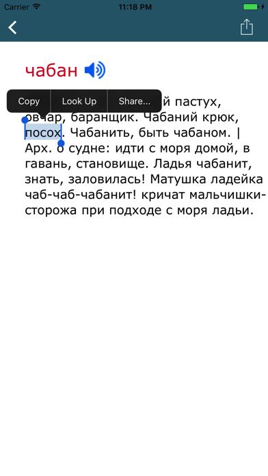 Словарь Даля - Толковый словарь русского языкаのおすすめ画像3
