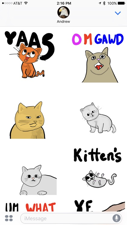 All the Kittens - Animated Cat Stickers screenshot-3