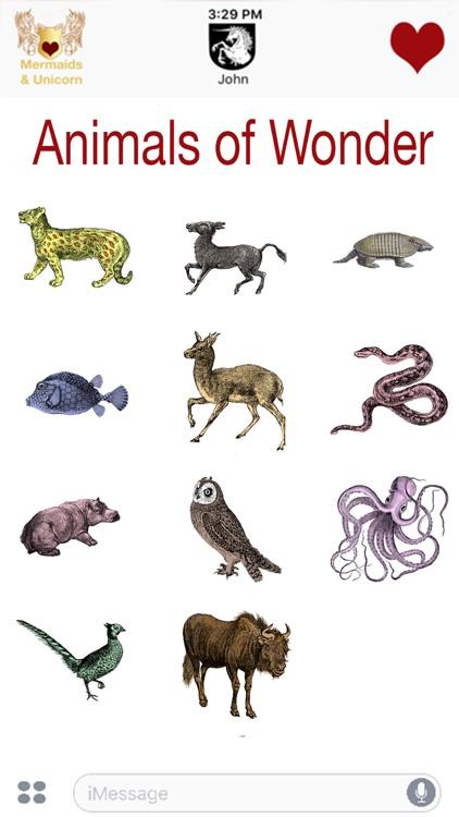 Animals of Wonder