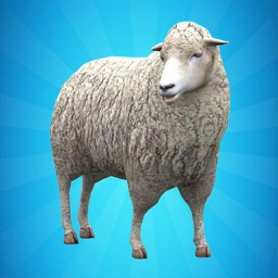 My Sheep Simulator