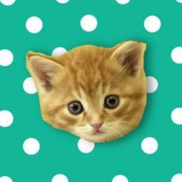Musical Kittens