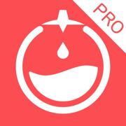 嘀嗒番茄钟Pro - 番茄工作法计时器