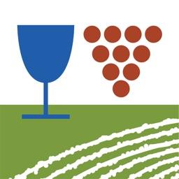 Algarve Wines