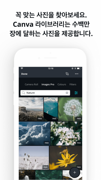 Canva: 사진 및 그래픽 Design 만들기 for Windows