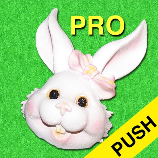 Easter Countdown Pro Push