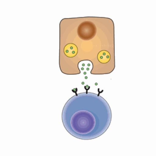 Biochemistry Lippincott's Illustrated Q&A Review icon