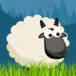 Sheep of Sleep