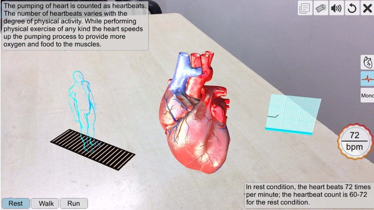 AR Human heart – A glimpse screenshot-2