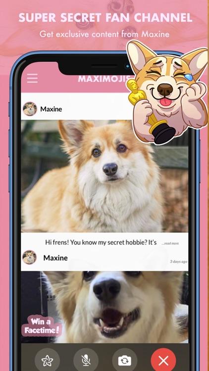 MaxiMojis - Corgi dog stickers screenshot-5