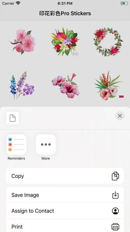 印花彩色Pro - Stickers
