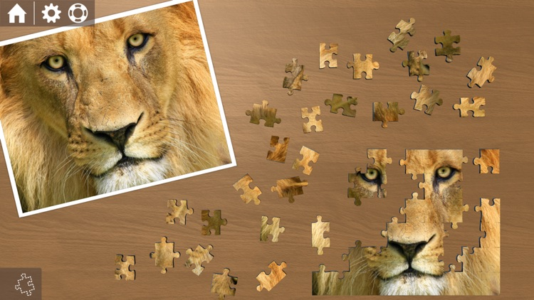 Ravensburger Puzzle screenshot-2