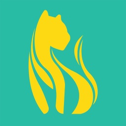 Lioness: Sexual Health Tracker