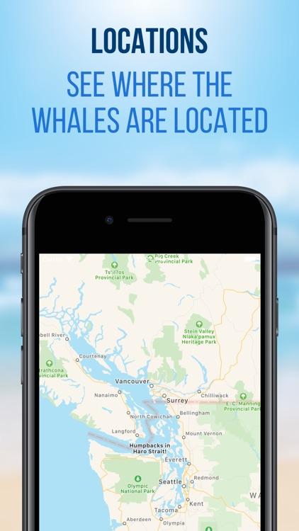 Whale Radio screenshot-3