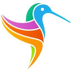 US Birds