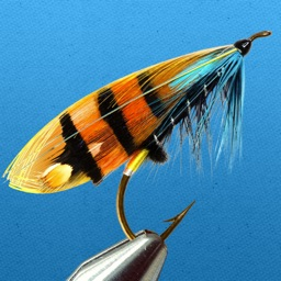 Fly Fishing Guide: Tying Flies