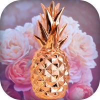 Rose Gold Wallpapers App Ipod Iphone Ipad And Itunes Are