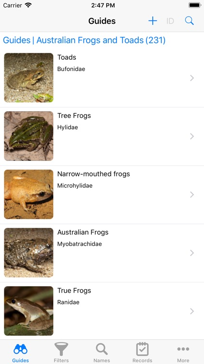 Australian Reptiles and Frogs