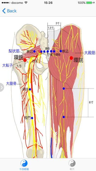 経穴マニュアルのおすすめ画像5
