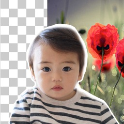 Background Remover & Changer